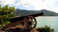 Cannon 01 video
