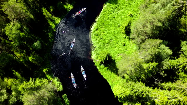 Canoeing in the wilderness video