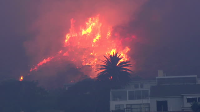 Cape Town-March,2015: Fierce bush fires on the slopes of Table Mountain,South Africa video