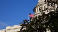 US Capitol dome with Red Tailed hawk - ECU video
