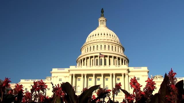 US Capitol video