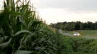 Car by corn field video