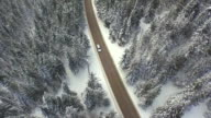 AERIAL: Car driving along the forest road in winter video