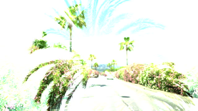 Car driving on beautiful road with palms in resort city, creative kaleidoscope video