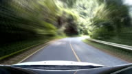 Car ride on road in forest sunny weather video