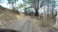 Car rides by dirt road in the forest. video