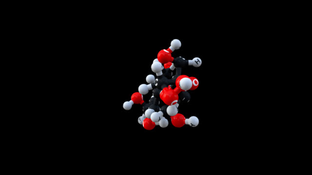 carbohydrate polymers video