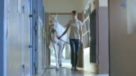 DS Caretaker leading white horse into the stable box video