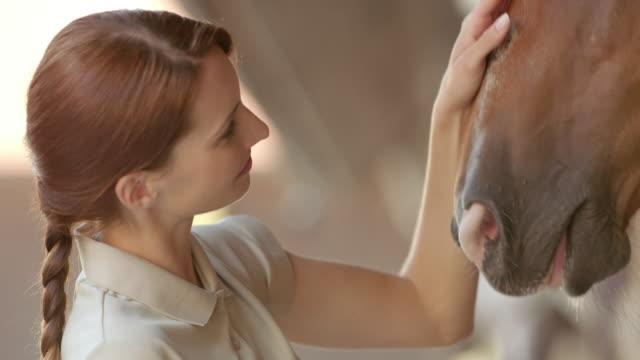 SLO MO Caretaker stroking a bay horse video