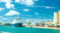 Cargo Ship Docked in Tropical Harbor video