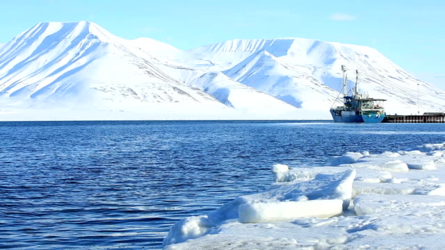 Cargo ship in a Norwegian port on the background of snowy mountains. video