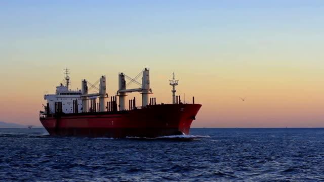 Cargo ship sailing from open sea video