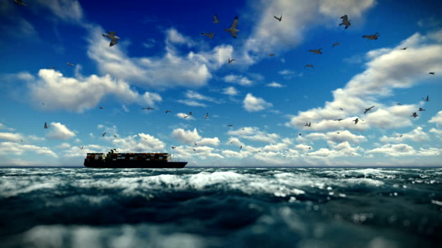 Cargo ship sailing, time lapse clouds and seagulls, sound included video