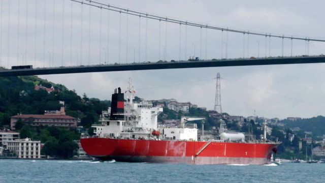 Cargo ship sails under the bridge Ataturk. video
