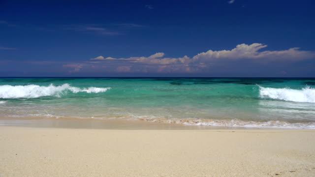 Caribbean beach video