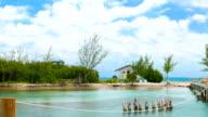 Caribbean Coral Island video