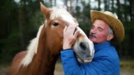 Caring old farmer is stroking, kissing and huging his horse. Slow-motion video