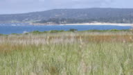 Carmel By the Sea video