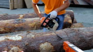 Carpenter cutting wood with motorized professional chainsaw. Sound of cutting tinber video
