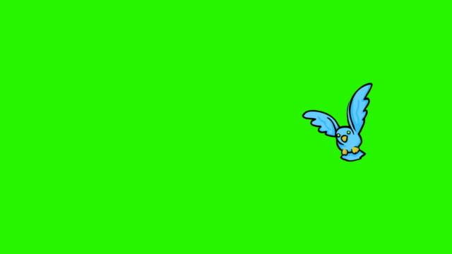 HD: Cartoon Bird Loop video