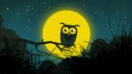Cartoon Owl In The Starry Night 2 video