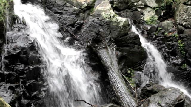 Cascade Waterfall video