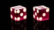 Casino Dice video