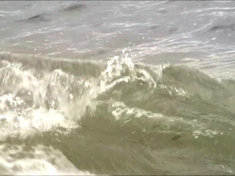 Castaway help message in bottle floating at sea video