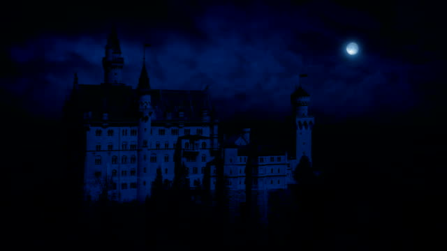 Castle On Mountainside At Night video