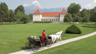 AERIAL Castle park and horse carriage riding through it video