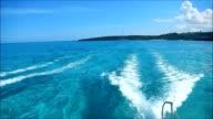 Catamaran in a tropical sea video