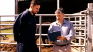 Cattle farmer interacting with a man on clipboard video