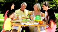 Caucasian Family Generations Eating Outdoors video