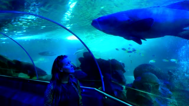 Caucasian woman walking in aquarium tunnel and looking up through the glass at a big fish video