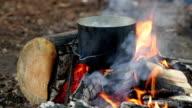 Cauldron on burning campfire video