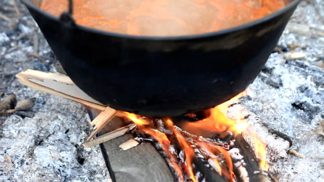 Cauldron with soup. video