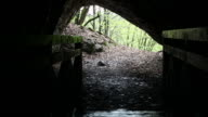 Cave opening in forest video