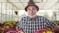 Cencerned senior male florist video