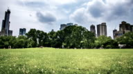 Central park at New York video