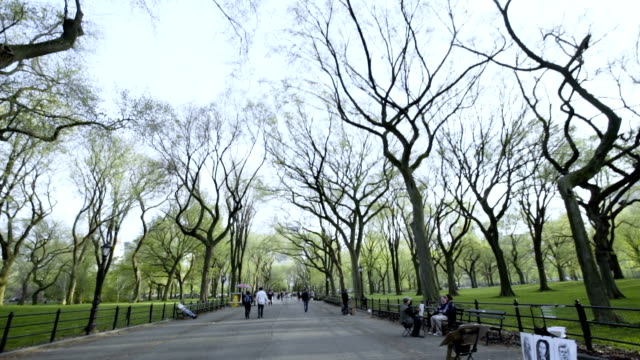 Central Park Bethesda Fountain establishing shot New York City video