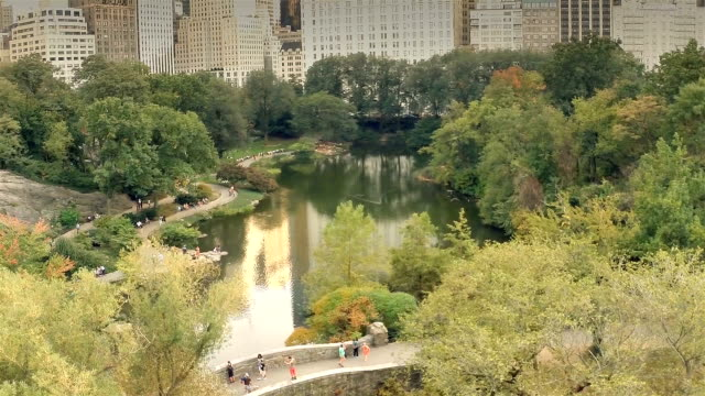Central park in NYC from above video