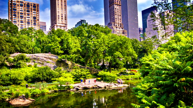 Central park New York video