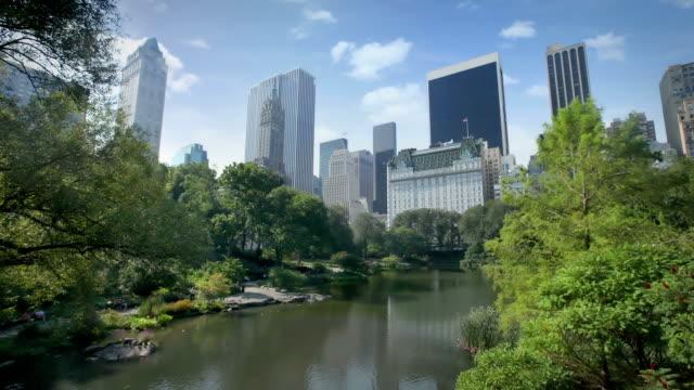 Central Park, New York video