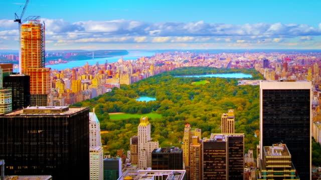 Central park. New York video
