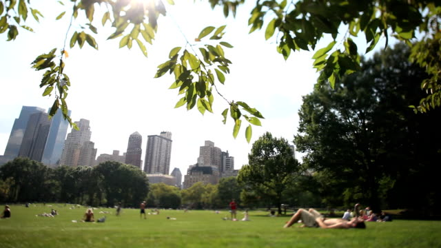 Central Park NYC video
