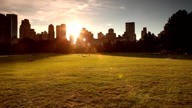Central Park Sheep Meadow Panorama video