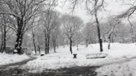 Central Park - Snowy Path by Bridge video