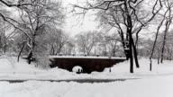 Central Park - Two Walking Under Bridge video