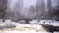 Central Park Winter Snow at Dusk in New York City video