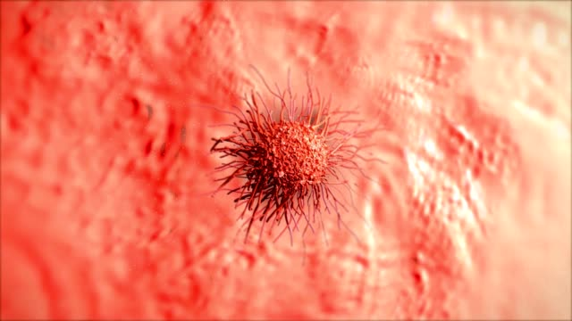 Cervical cancer cell video